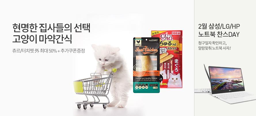 고양이간식/노트북찬스
