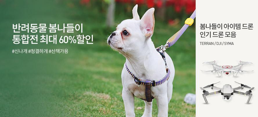 반려동물통합전/드론