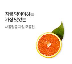 과일 모음전